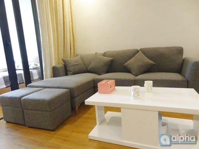 Căn hộ 1 phòng ngủ , nội thất đẹp cho thuê tại Royal City