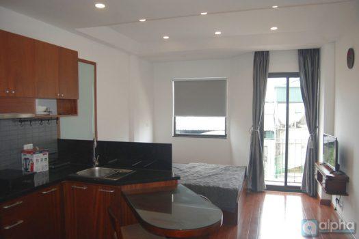 Cho thuê căn hộ studio gần tòa nhà Lotte Đào Tấn