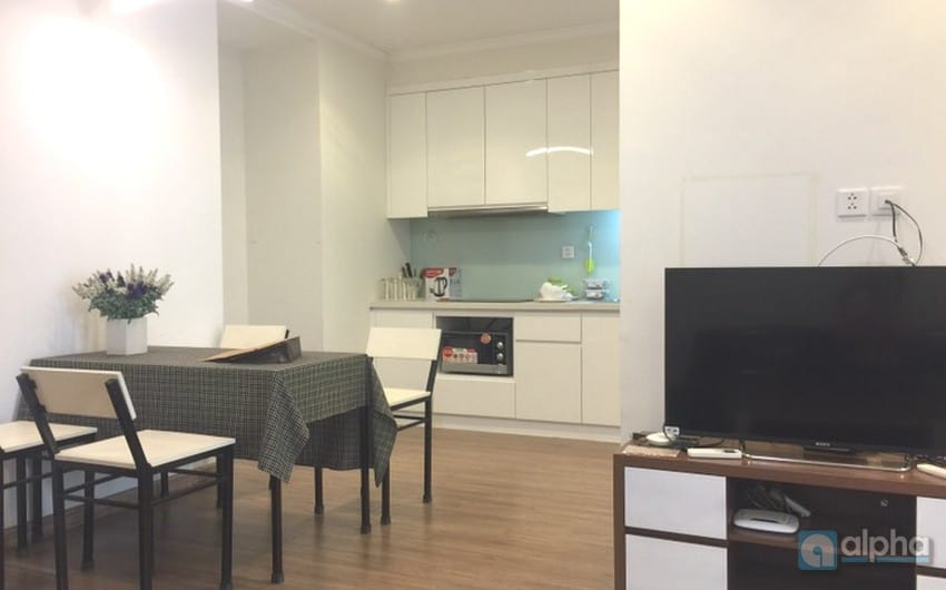 Times City apartment 1Br for lease in Hai Ba Trung District