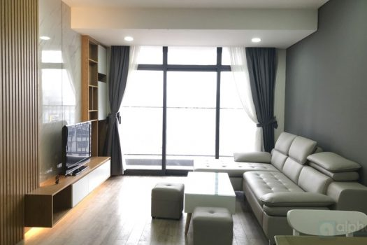 Fully furnished 2 bedrooms apartment for lease in Discovery Complex, 3